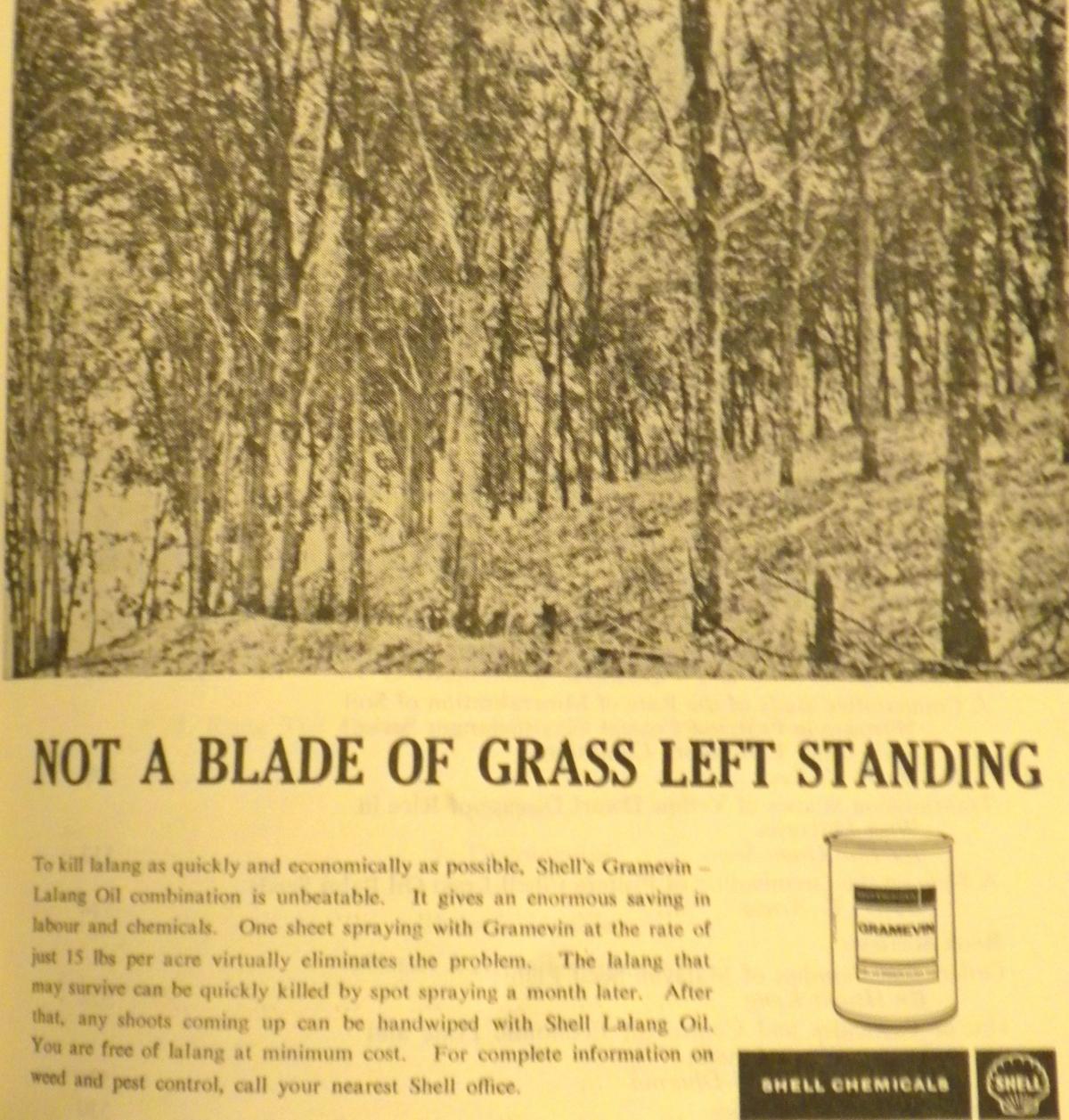 """""""Not a blade of grass leftstanding"""""""